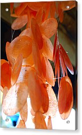 Orange Chimes Acrylic Print by Heather S Huston