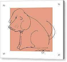Orange Dog Acrylic Print
