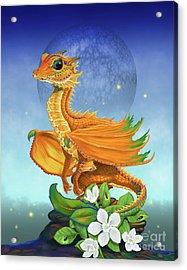 Orange Dragon Acrylic Print by Stanley Morrison