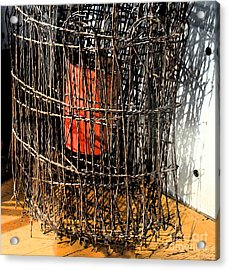 Orange In Wire Acrylic Print by Gary Everson