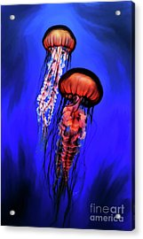 Orange Jellyfish Acrylic Print