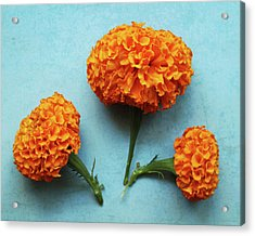 Orange Marigolds- By Linda Woods Acrylic Print