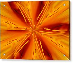 Orange Marmalade Acrylic Print