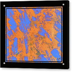 Orange On Blue Acrylic Print by JOnezi