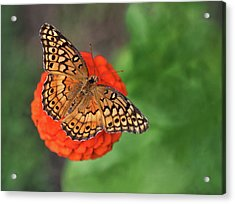 Orange Orange Green Acrylic Print