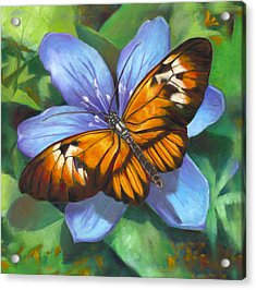 Orange Piano Key Butterfly Acrylic Print