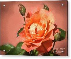 Orange Poetry Acrylic Print