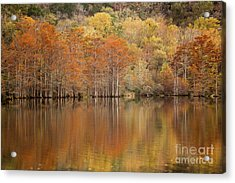 Acrylic Print featuring the photograph Orange Pool by Iris Greenwell