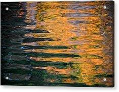 Orange Sherbert Acrylic Print by Donna Blackhall