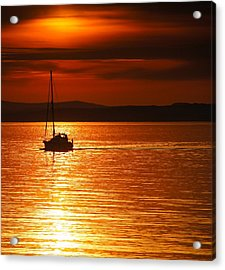 Orange Silhouette Acrylic Print by Nik Watt