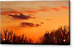 Orange Sky At Night Acrylic Print
