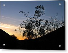 Acrylic Print featuring the photograph Orange Sky Nature Silhouette by Matt Harang