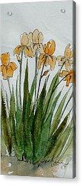 Orange Sprng Acrylic Print