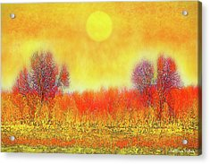 Orange Sunset Shimmer - Field In Boulder County Colorado Acrylic Print