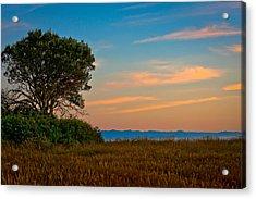 Orange Sunset With Tree Acrylic Print