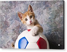 Orange Tabby Kitten With Soccer Ball Acrylic Print by Garry Gay