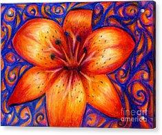 Orange Tiger Lily Drawing Acrylic Print