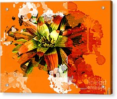 Orange Tropic Acrylic Print