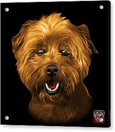 Acrylic Print featuring the mixed media Orange West Highland Terrier Mix - 8674 - Bb by James Ahn