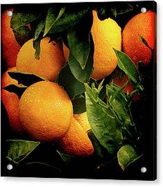 Oranges Acrylic Print by Ernie Echols