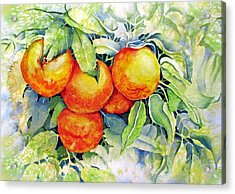 Oranges-in-italy Acrylic Print by Nancy Newman