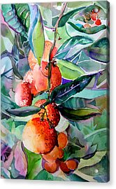 Oranges Acrylic Print by Mindy Newman