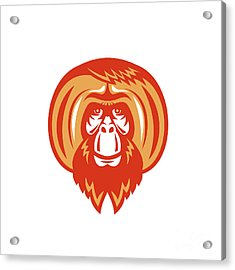 Orangutan Bearded Front Retro Acrylic Print