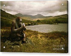 Orangutan With Smart Phone Acrylic Print by Amanda Elwell
