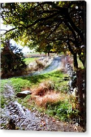 Acrylic Print featuring the painting Orchard Country Roads by Janine Riley