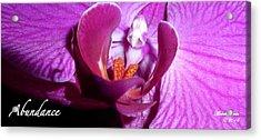 Orchid Abundance Acrylic Print