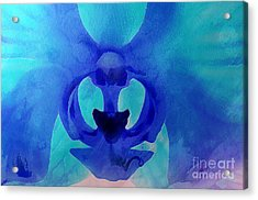 Orchid Blessing Acrylic Print