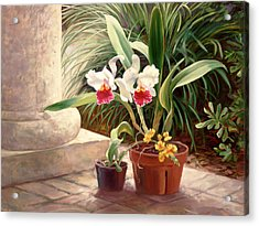 Orchid Duo Acrylic Print