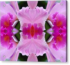 Orchid Fusion Acrylic Print