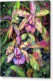 Orchid Garden I Acrylic Print