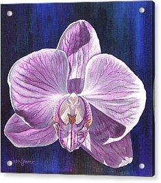 Orchid I Acrylic Print