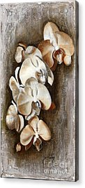 Orchid Ladder Acrylic Print by Daniela Easter