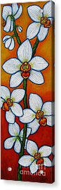Orchid Oasis Acrylic Print