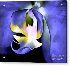 Orchid Of Life Acrylic Print