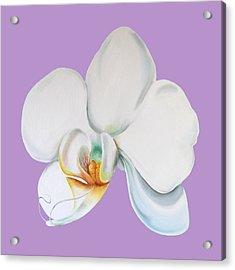 Acrylic Print featuring the digital art Orchid On Lilac by Elizabeth Lock