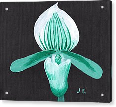Orchid-paphiopedilum Bob Nagel Acrylic Print
