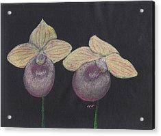 Orchid-paphiopedilum Fanaticum Acrylic Print