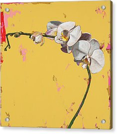 Orchids #3 Acrylic Print