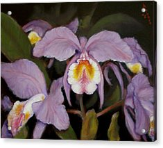 Acrylic Print featuring the painting Orchids by Donelli  DiMaria