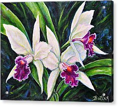 Orchids Acrylic Print by Gail Butler
