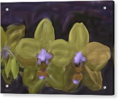 Acrylic Print featuring the digital art Orchids Golden by The Art of Alice Terrill