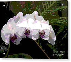 Acrylic Print featuring the photograph Orchids Impressionistic by The Art of Alice Terrill