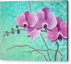 Orchids In Pink Acrylic Print by Arlissa Vaughn