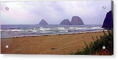 Oregon Coast 1 Acrylic Print by Marty Koch