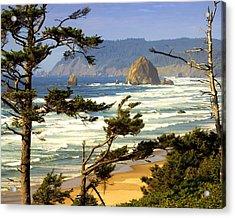 Oregon Coast 15 Acrylic Print by Marty Koch