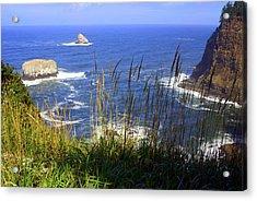 Oregon Coast 4 Acrylic Print by Marty Koch
